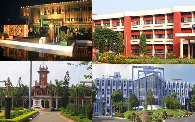Best Colleges For BSc in India