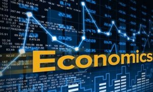 Colleges in India For Economics Honours