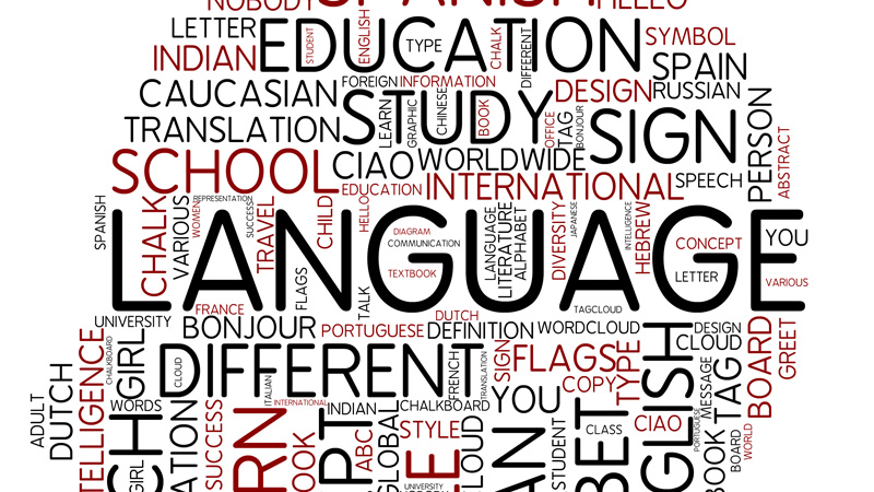 Colleges in India For English Literature