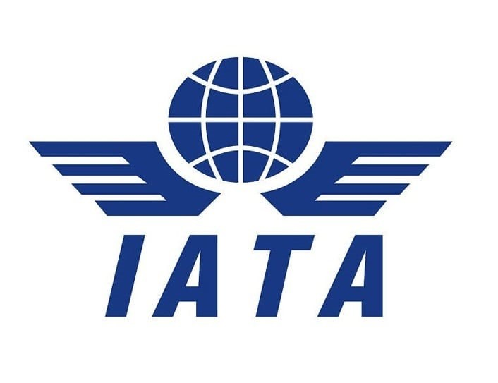 Top IATA Institutes in India