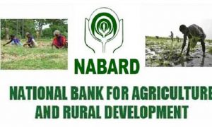 NABARD Development Assistant Syllabus
